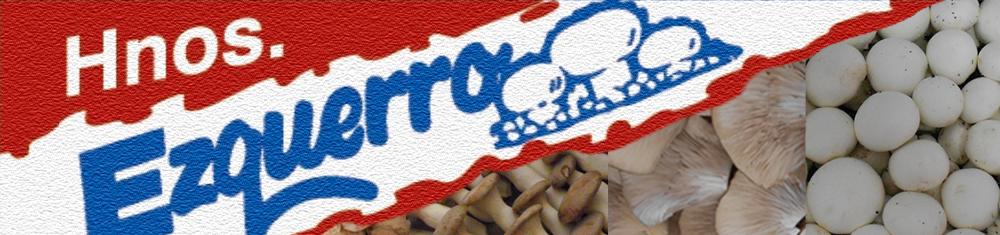 https://www.hermanosezquerro.com/images/logo-arenisca-hnosezquerro-rojo-azul-champ1000x235.png